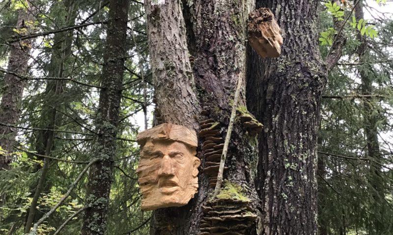 Kääpäiseen puuhun kiinnitetty taideteos, jossa kasvot.